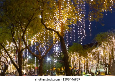 Blurred image Decorative outdoor string lights hanging on tree in the garden at night time festivals season - decorative Christmas lights - happy new year