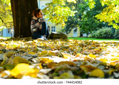 Blurred image of a girl in glasses with backpack sitting under the tree in autumn park and writing something in her notebook. Erasmus student, studying abroad and tourist concept
