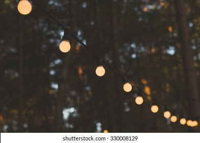 Blurred image of light bulbs outdoor on a wire against dusk forest, holiday concept