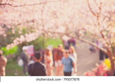 Blurred image of people walking on street in the pink flowers park background.