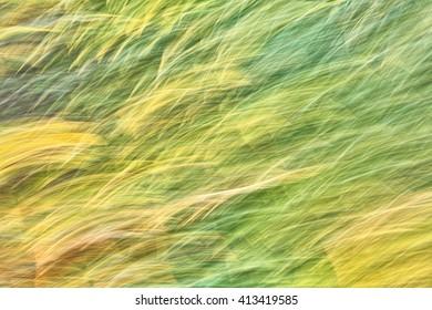 Blurred image of a soft background