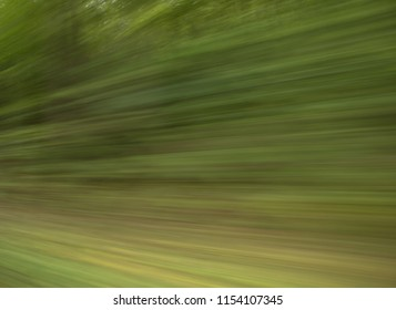 Blurred image of trees showing speed and action
