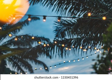 Christmas Lights In Palm Trees.Palm Tree Christmas Lights Images Stock Photos Vectors