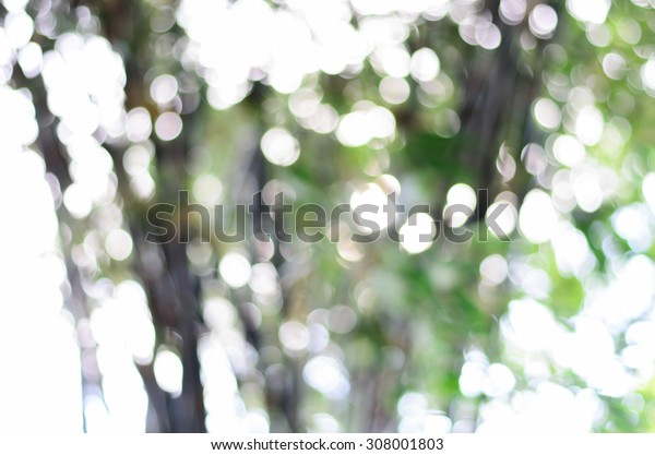 Blurred Lights Bright Green. Spring Bokeh. Abstract Summer Background