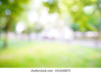 Blurred natural background. Spring summer defocused greenery background in park on nature.