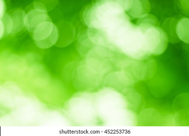 Blurred nature background.Backdrop with color and bright sun light. Summer holidays concept.bokeh  or Christmas background.Green Energy.