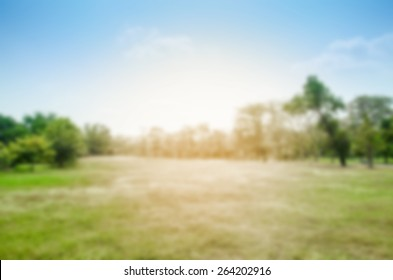 blurred park abstract background