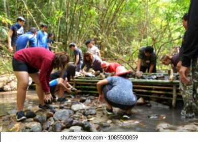 blurred photo of volunteers are helping to create dams in the forest stream to moisturize the area.