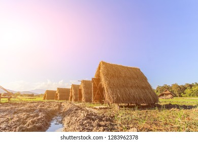 blurred photo,Temporary huts that were built from rice straw harvested in the harvest season to be used as a temporary home or a homestay for tourists interested in the form of a small straw hut.