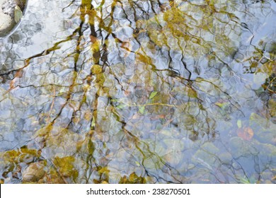 A blurred reflection of trees and sky on small woodsy river. Autumn.
