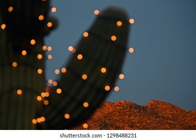 Blurred saguaro decorated with lights in front of mountain at sunset