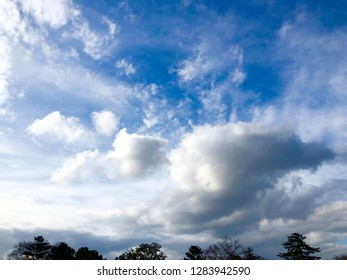 Blurred scenic view of trees over cloudscape with blue sky in evening time.