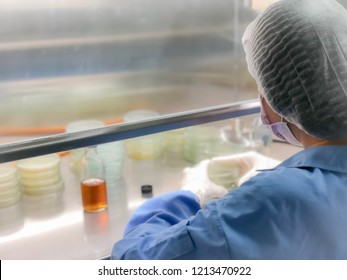 Blurred of scientist doing the microbiology testing in laminar air flow cabinet at the microbiological limit test room