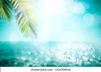 Blurred summer background of free space for your decoration and palm leaves with sun light.