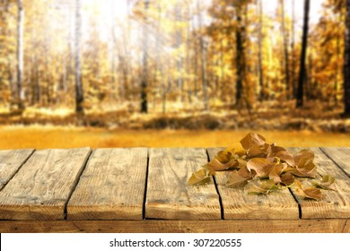 blurred sunny background of forest and deck