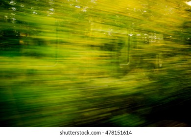 Blurred trees from the train passing the forest in the autumn