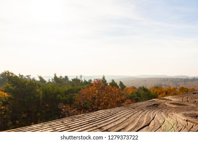 Blurred view of the autumnal forest seeing from a lookout turret. The wooden balustrade of the turret is in focus to define the view-point. Background concept with copy space.