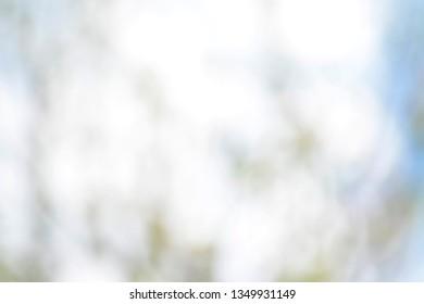 blurred white background