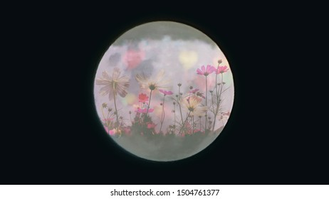 Blurring the moon-shaped flower and heart-shaped bokeh on a black background.