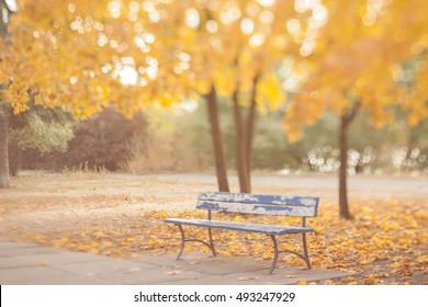 Blurry autumn wallpaper. Old bench in the autumn park. Natural optical tilt shift photo.