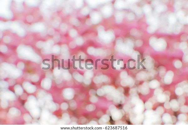 Blurry bokeh pink trumpet flowers nature background