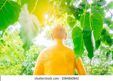 Blurry buddha statue on Bodhi leaf or Ficus religiosa or sacred fig tree on daylight.