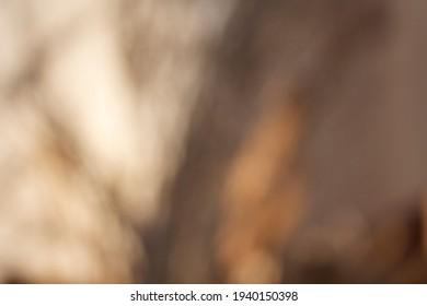 Blurry elegant gold background, luxury minimal color palette