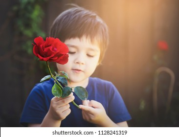 Blurry face of cute little boy holding red rose next to wooden fence in the garden, kid boy with beautiful rose, Children learn and play about nature concept.
