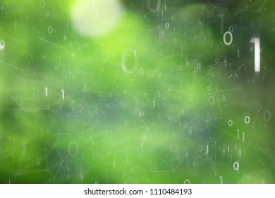 Blurry green colored nature bokeh with artistic binary numbers network cyberspace background. Selective focus used.
