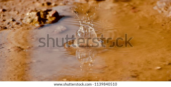 A blurry scattered water bubbles isolated unique photograph