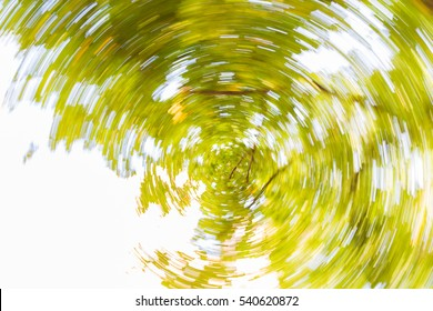 Blurry spinning leafs. Blurry on purpose