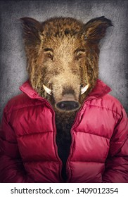 Boar in clothes. Man with a head of an boar. Concept graphic in vintage style with soft oil painting style.