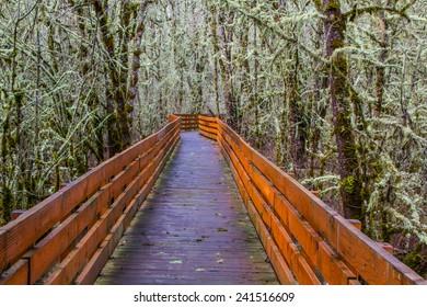 A boardwalk across a wetland in William L. Finley National Wildlife Refuge