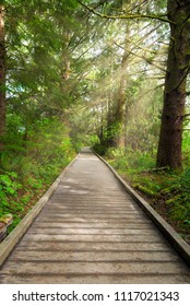 Boardwalk along hiking trail by Lewis and Clark River at Fort Clatsop