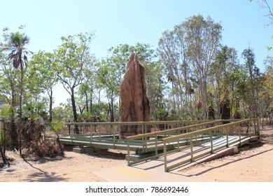 Boardwalk around an australian termite mound