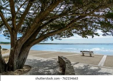 boardwalk at beach near Jard-sur-Mer, vendee, France