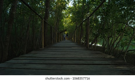 A boardwalk built inside a mangrove park in Kalibo, Aklan, Philippines. It serves as a path through the forest of mangrove trees.