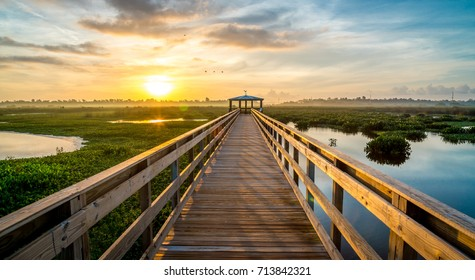 Boardwalk into the rising sun over the marsh. Birds flying across the sky, and water surrounding the boardwalk.