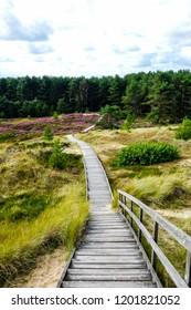Boardwalk off Amrum Island in Schleswig-Holstein Germany North Sea