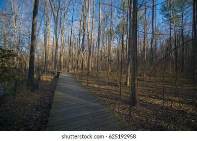 A boardwalk on a running trail during summer
