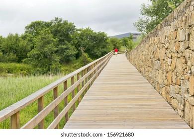 Boardwalk over the marsh on Catoira town