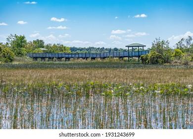Boardwalk over wetlands area - Chapel Trail Nature Preserve, Pembroke Pines, Florida, USA
