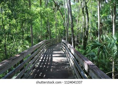 Boardwalk at the park