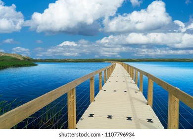 Boardwalk, part of the trail,  across wetlands at Greenwich, Prince Edward Island National Park, PEI, Canada