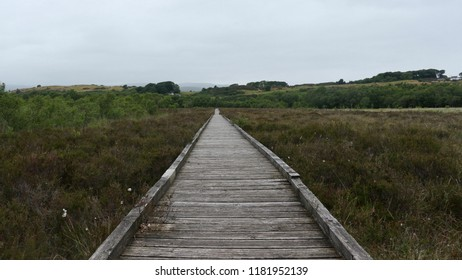 Boardwalk path crossing the moorland at Duddon Mosses and Angerton Moss in Cumbria
