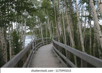 Boardwalk at Sackville Waterfowl Park, New Brunswick