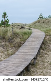 Boardwalk through dune on island Amrum or Sylt