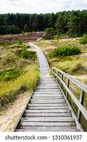 Boardwalk through the dunes on the island in Amrum North Sea Germany