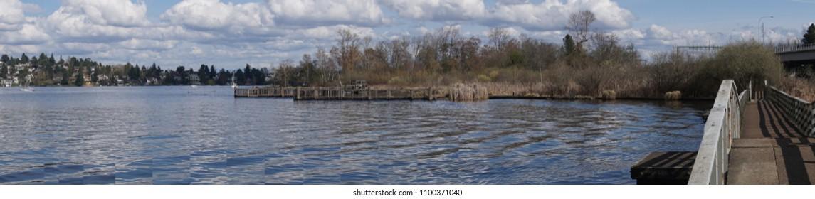 Boardwalk through wetlands on Lake Washington with Laurelhurst neigborhood in background, Seattle, Washington