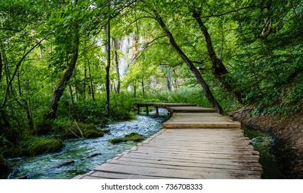 Boardwalk through the woods leading to Galovac Waterfall in Galovac Waterfall in Plitvice Lakes National Park, Croatia